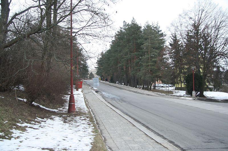 Borovina by si zasloužila investice a opravy