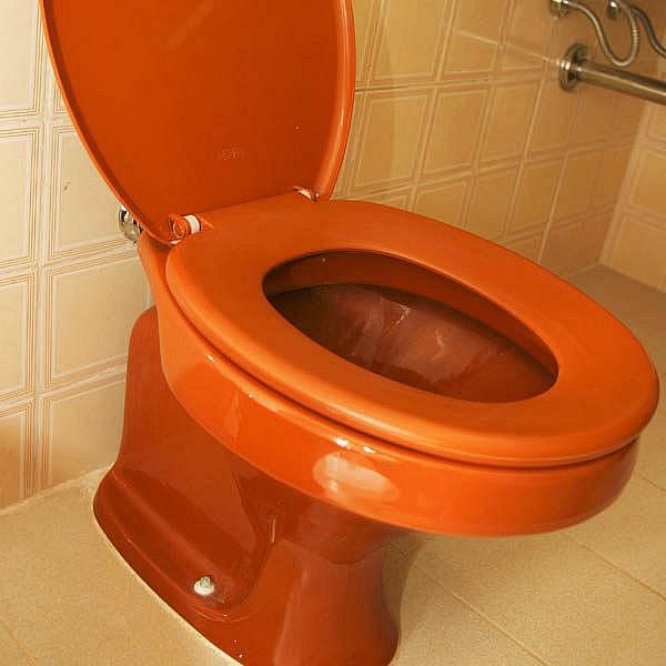 Nejvyšší orgány města Třebíč rozhodují o záchodových štětkách