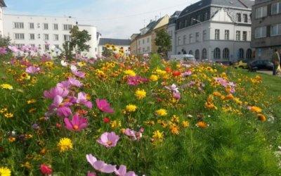 Zahradnický experiment v Bruntále doslova bere lidem dech