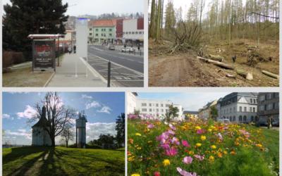 Jak pomoci přírodě vnašem okolí?