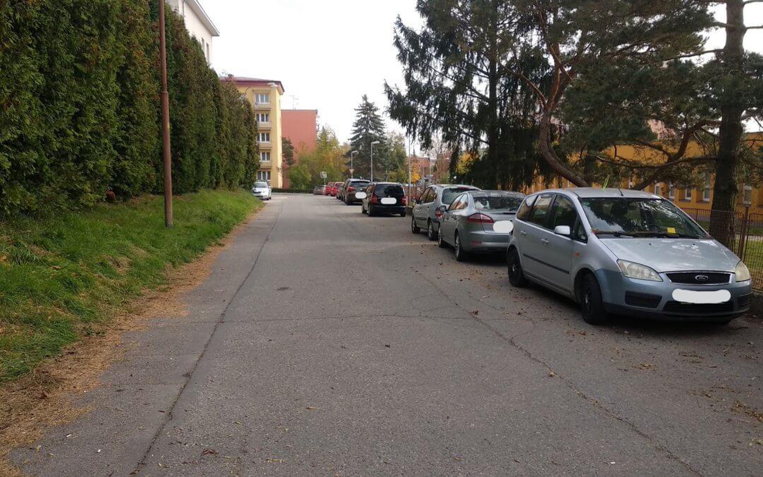 Vyzýváme vedení města ke stavbě chodníku a řešení problémů na ulici Družstevní